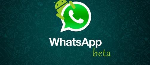 Nova versão do WhatsApp Beta para Android e IOS - com.br