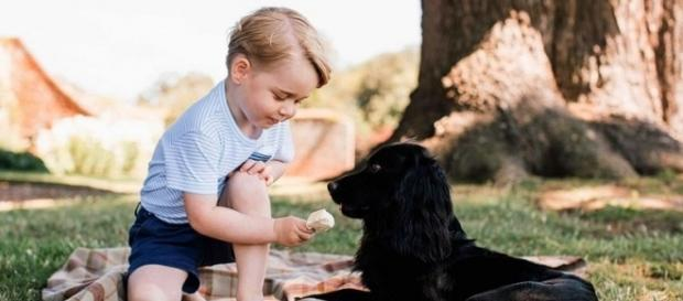 Prince George Is 3! See the Future King's Too-Cute New Birthday ... - yahoo.com