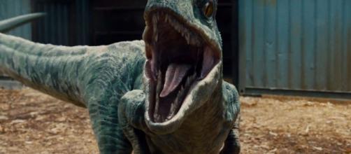Jurassic World Review -- Vulture - vulture.com