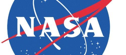 NASA Official Logo (credit NASA)