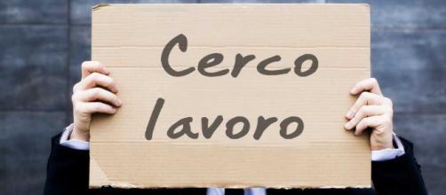 Lavoro, le offerte in provincia   Cronache Maceratesi - cronachemaceratesi.it