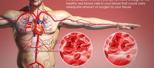 Eritrocitos en sangre, disminución
