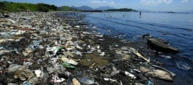Rio não consegue nem limpar as águas da Baía de Guanabara