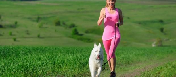 Saca a pasear al perro y mejora tu salud | La Opinión - laopinion.com