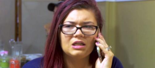 Amber Portwood is in trouble with the IRS - usmagazine.com