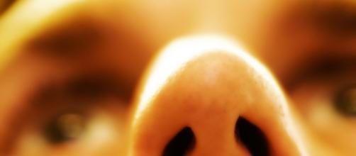 Un batterio naturalmente presente nel naso produce un efficace antibiotico