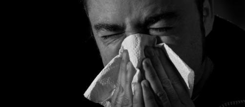 Consejos para la prevención y el tratamiento de los resfriados (I ... - ecoosfera.com