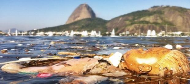 Jornal americano critica condições de água no Rio de Janeiro