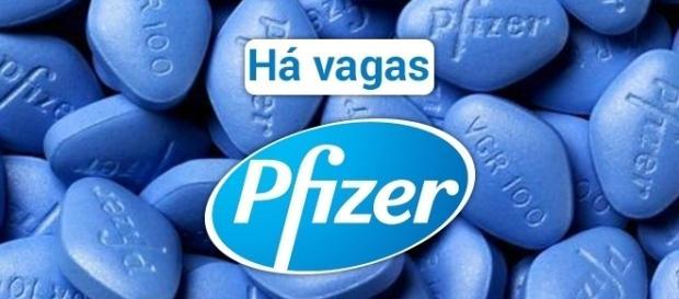 Vagas na Pfizer. Foto: Reprodução Independent.