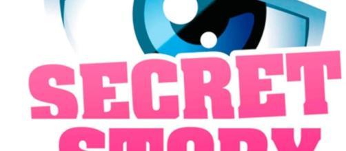Secret Story 10 et 11 seront de retour sur NT1