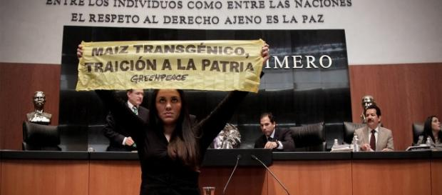Activista de Greenpeace irrumpe en el senado de Mexico