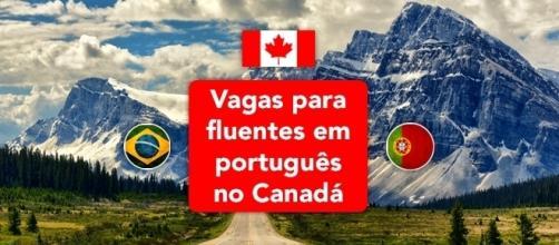 Canadá tem dezenas de oportunidades para fluentes em português - Foto: Reprodução Mrwallpaper