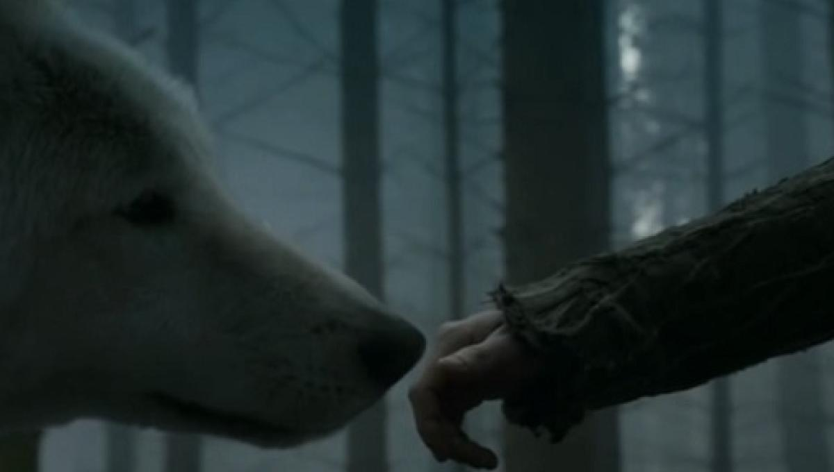 Game Of Thrones The Winged Wolf And The Euron Cersei S Theories