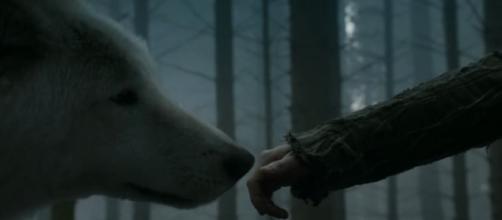 Game of Thrones theories, Jojen and Summer in season 3. Screencap: Pate Cressen via YouTube