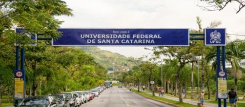 UFSC abre processo seletivo para contratação de professores substitutos