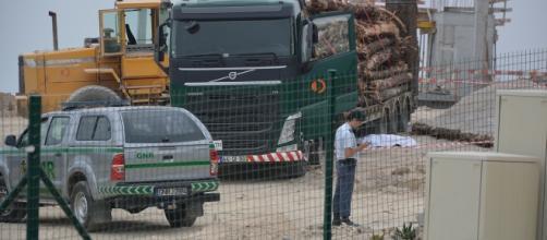 Motorista preparava carregamento de troncos quando caiu do camião
