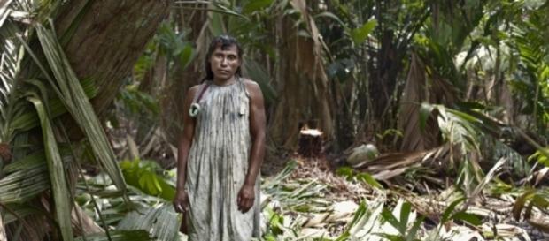 Na tribo Warao, as 'tida wena' assumem papéis femininos, mas são consideradas 'dois-espíritos'
