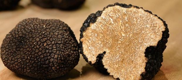 La trufa es un alimento que posee una gran variedad de propiedades.