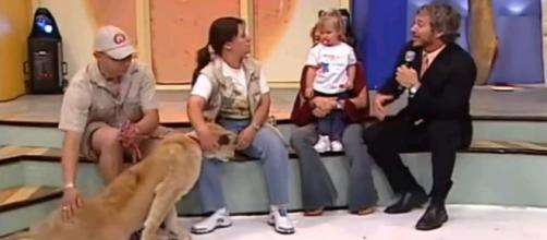 León ataca a niña en un programa de televisión en vivo. (Foto: Captura de YouTube)