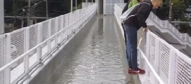 Passarela olímpica alaga e cariocas improvisam nado