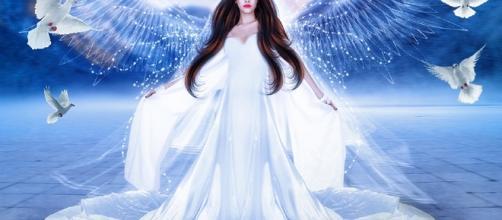 ¿ Eres un ángel encarnado en la Tierra?