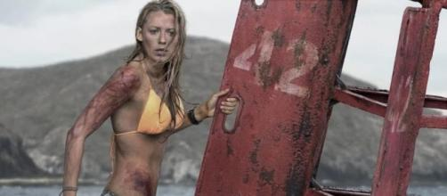 The Shallows – CINEMA BRAVO - cinemabravo.com