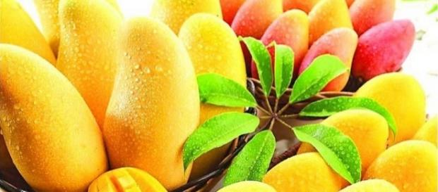 These 6 Health Benefits Will Make You Gobble Up All the Mangoes in ... - remedyspot.com