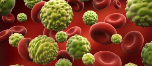 7 mitos sobre el cáncer | TN.com.ar - com.ar