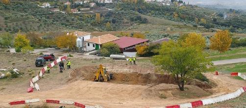 El olivo qe determinaría la zona donde están enterrados los cuerpos