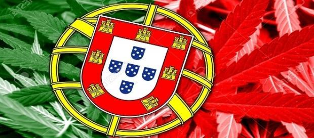 Il Portogallo raccoglie i frutti della legalizzazione.