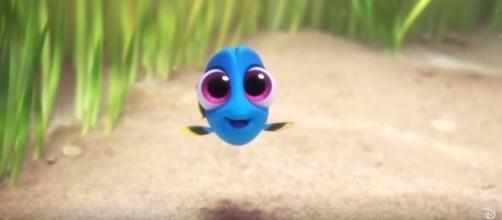 Bienvenue dans l'univers de la plus bleue des bêtes à mémoire de poisson rouge.