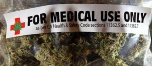 Battaglia sulla cannabis alla Camera, 1700 emendamenti - stadio24.com