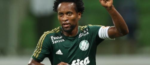 Zé Roberto, lateral do Palmeiras