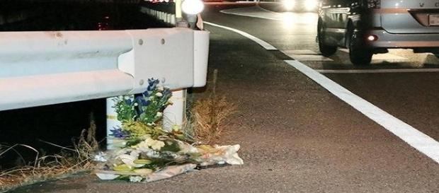 Flores foram colocadas no local onde pedestre foi atropelada por caminhoneiro jogando Pokémon Go no Japão