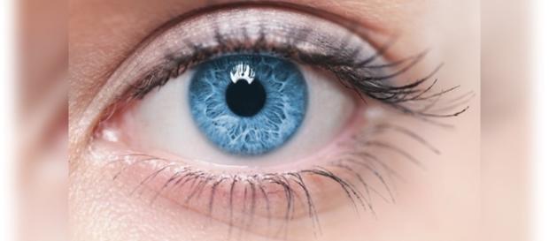 Quem tem olhos castanhos, podem optar por tê-los na cor azul