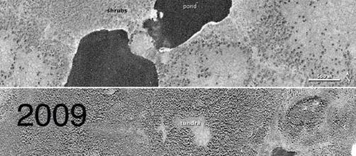 La tundra siberiana nel 1966 e nel 2009