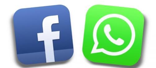 WhatsApp cambia i termini e l'informativa sulla privacy