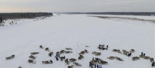 Zombie' Anthrax Goes on a Killing Spree in Siberia: How? - livescience.com