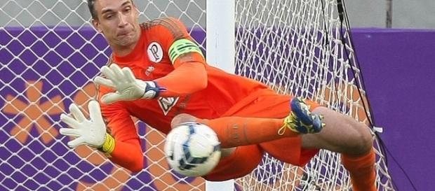 Fernando Prass pratica defesa pelo Palmeiras