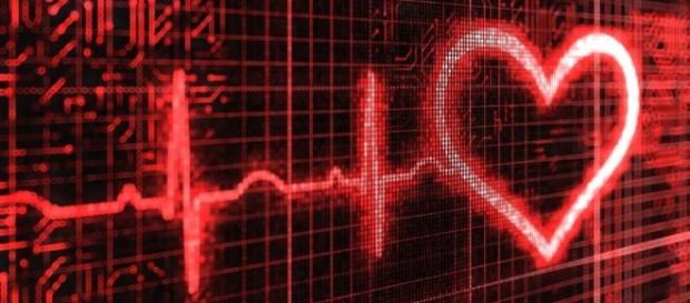 Fotos: Datos y curiosidades sobre el corazón - ¿Cuándo se producen ... - muyinteresante.es