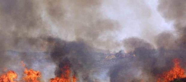 Incendi boschivi: La Forestale denuncia una persona nel Cilento - cilentonotizie.it