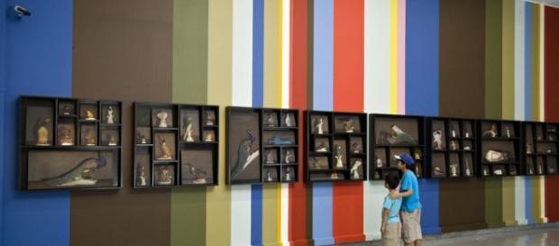 Foto: 5 ótimas exposições em cartaz Tecnoartenews.com/Reprodução