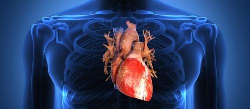 Desarrollan medicamento contra la insuficiencia cardíaca | Globovisión - globovision.com