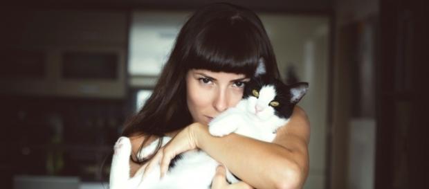 Amoureux des chats, journée internationale du chat