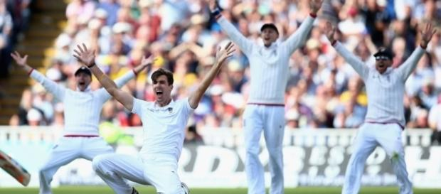 Steven Finn justified his comeback on the final day - cricspirit.com