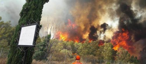 L'incendio scoppiato questo pomeriggio a Santa Margherita.
