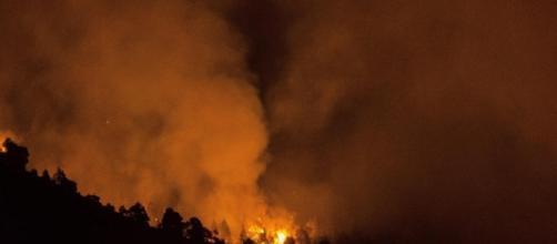 La Palma: el fuego ha devorado más de 4.800 hectáreas de bosque.