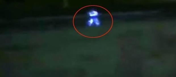 Segundo Choy, criatura emitia luzes a partir do crânio (YouTube / Anthony Choy)