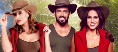 There may be no reality celebs in this year's jungle [Image via ITV]