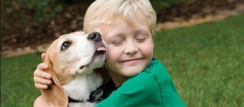Os programas são incentivadores para estar com os animais e amá-los